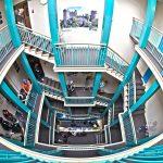 estrutura da seda college